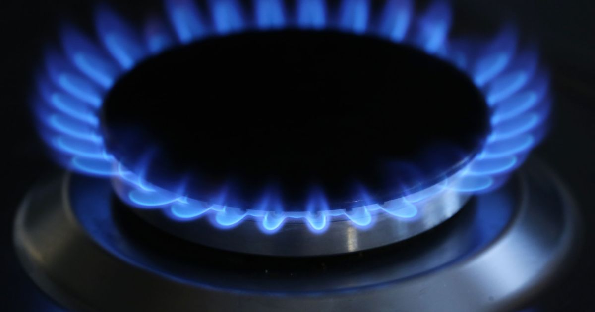 Energy company Green 'on the brink of entering administration'