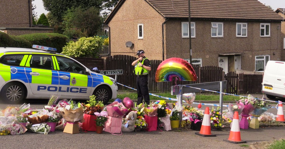 Man to face court charged with murders of mother and three children