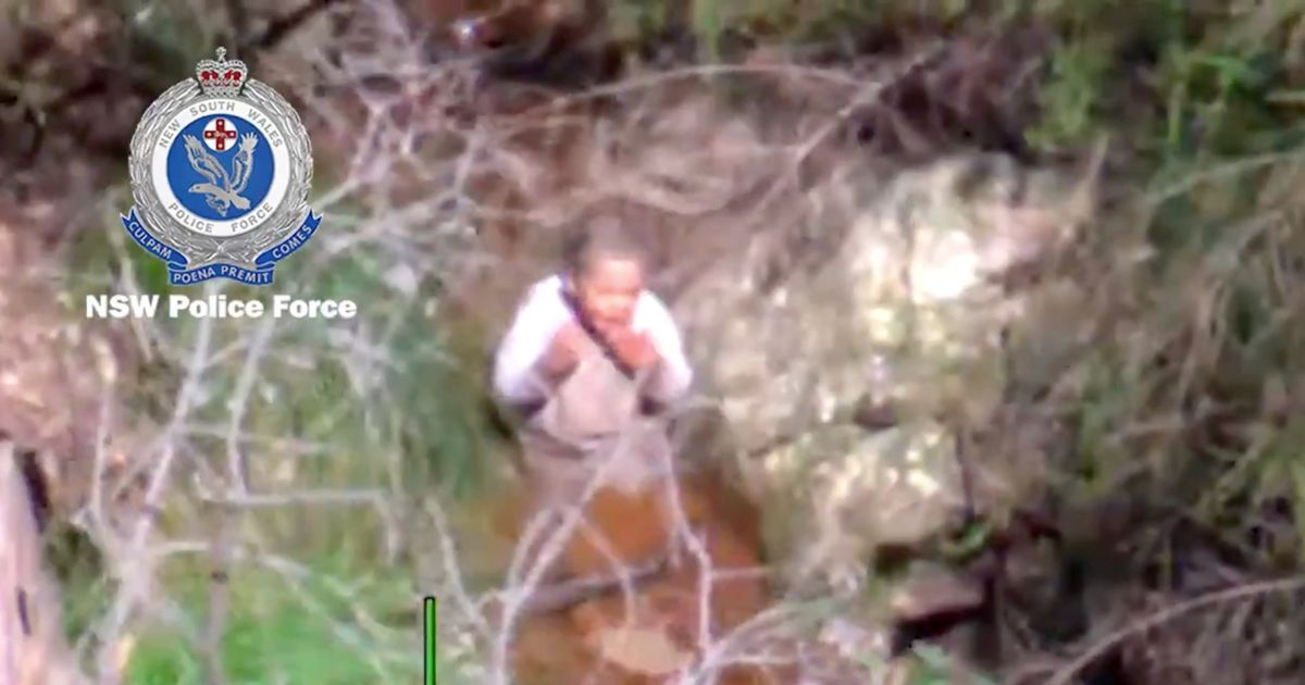 Missing toddler who vanished in jungle found after 3 days drinking muddy water