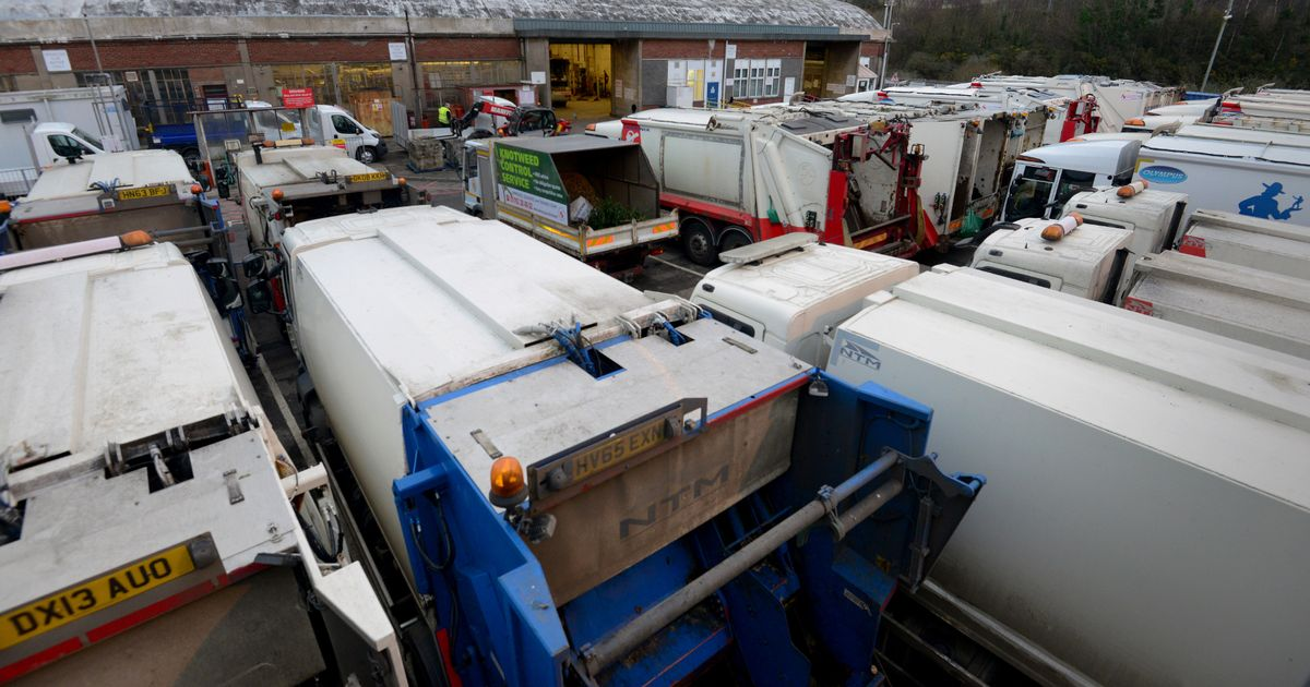 Why haven't my bins been collected? Lack of drivers and Covid-19 leads to rubbish pick-up delays