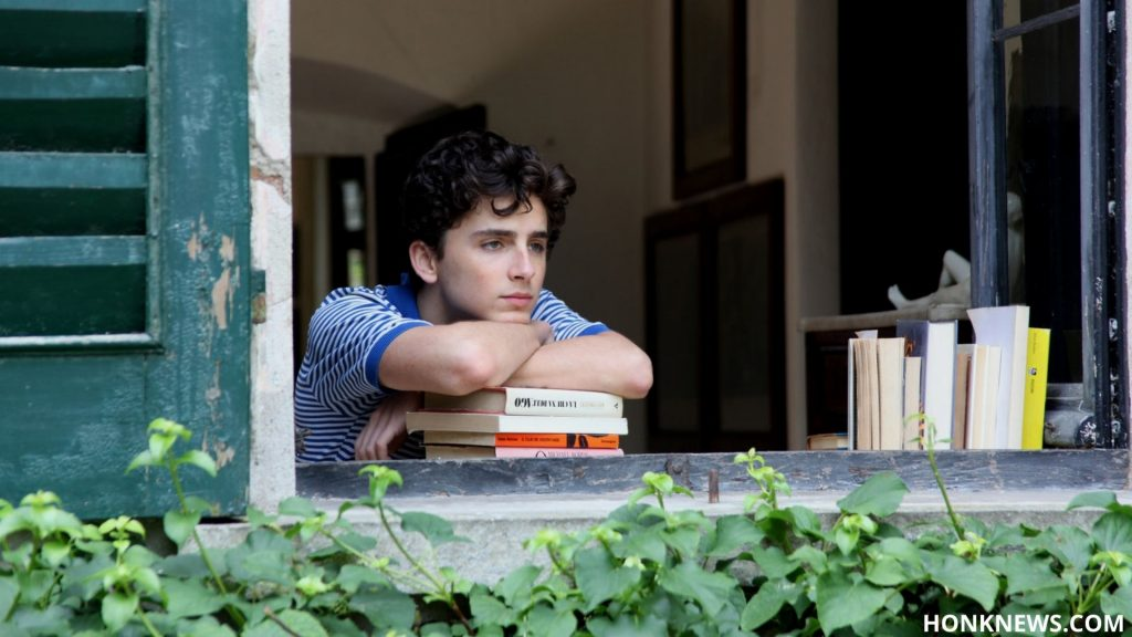 Possibility of Call Me By Your Name 2? Check Out Everything You Want To Know 7