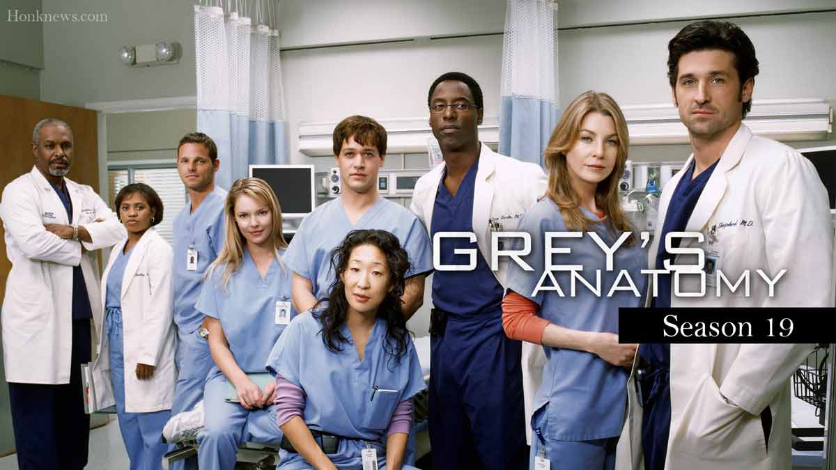 Grey's Anatomy Season 19 Confirmed Announcement| Release Date, Plot And Updates