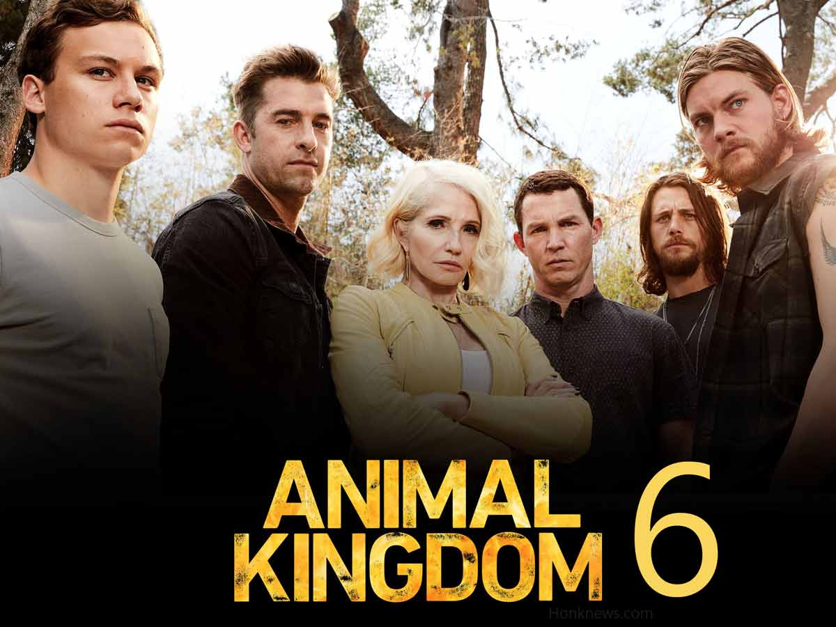 TNT Confirmed Animal Kingdom 6| Know Everything About It