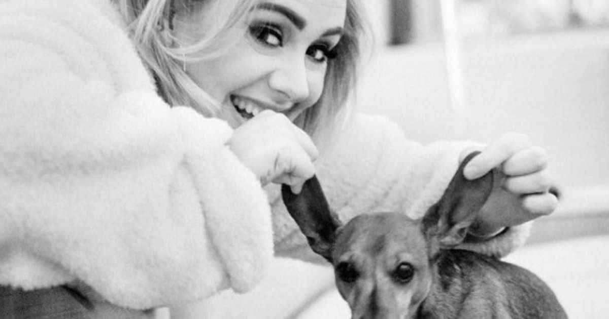Adele named her dog after Britney Spears and then changed her mind
