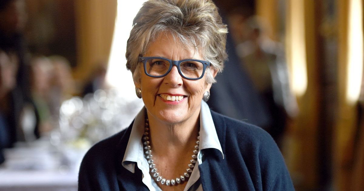 Bake Off judge Prue Leith tries to block school's new playing field plan