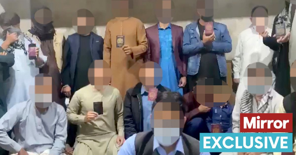 British Afghans beg UK to save them from Taliban as families forced to live off scraps