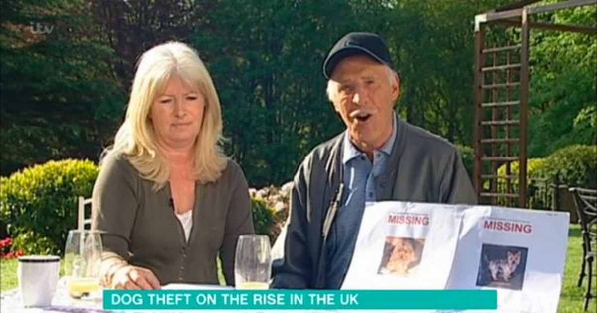Bruce Forsyth's daughter wins 15 year fight to change pet theft law