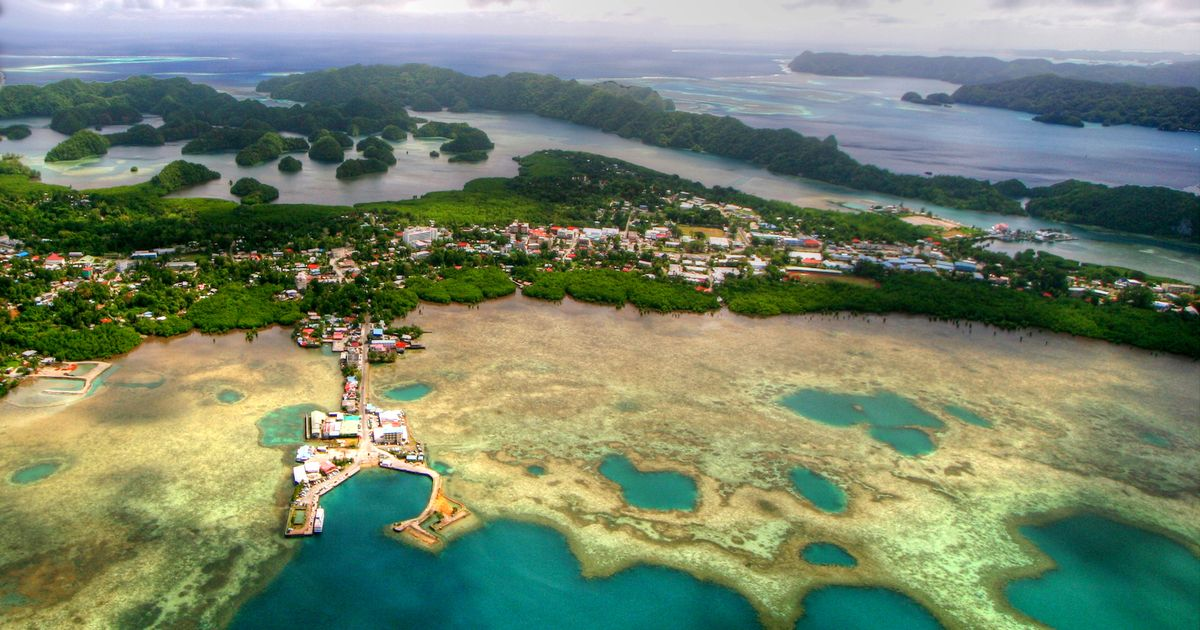 An impressive 99% of the population over the age of 12 in the tiny Pacific country of Palau have had a Covid jab