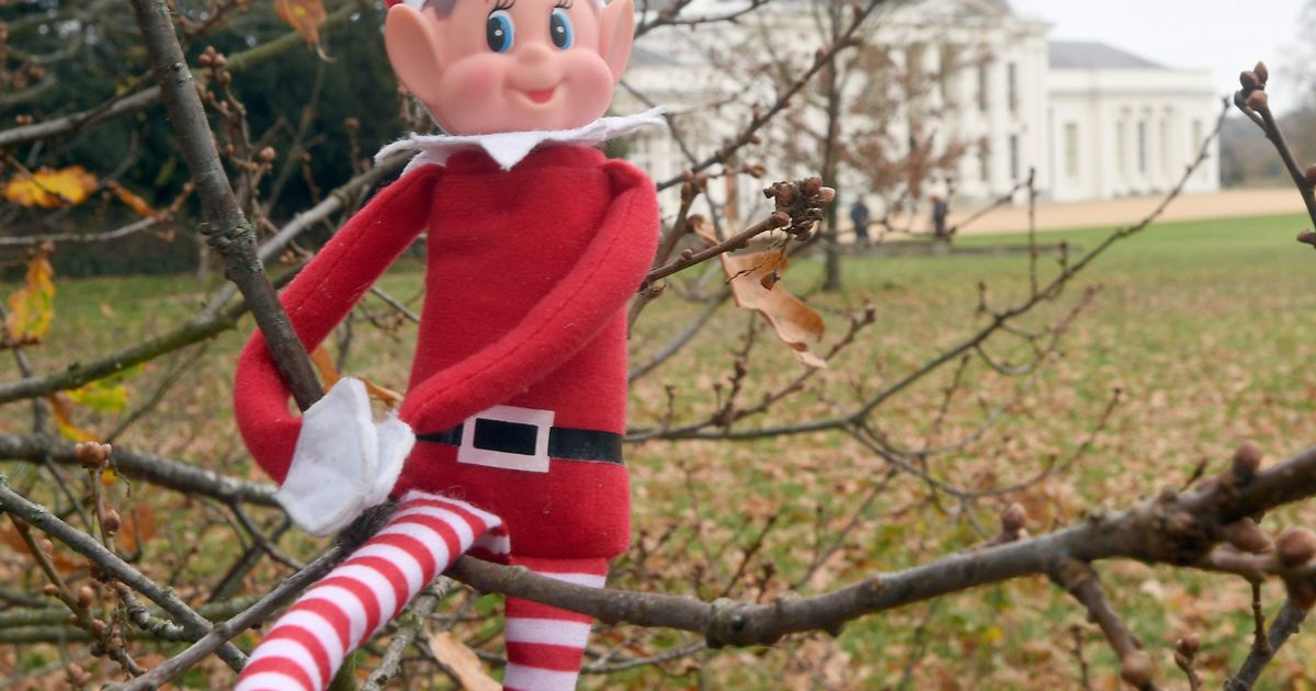 Elf on the Shelf and Barbie among toys caught in Christmas shortage retailers warn