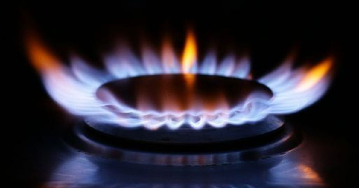 Goto Energy collapses as energy crisis continues