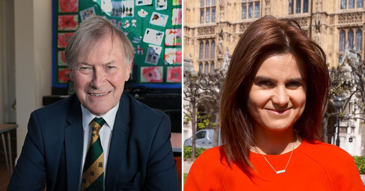 Jo Cox, David Amess and all the MPs who have been killed while in office