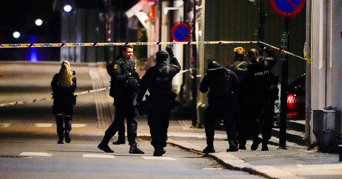 Kongsberg bow and arrow attack: Man goes on rampage in Norway with multiple killed