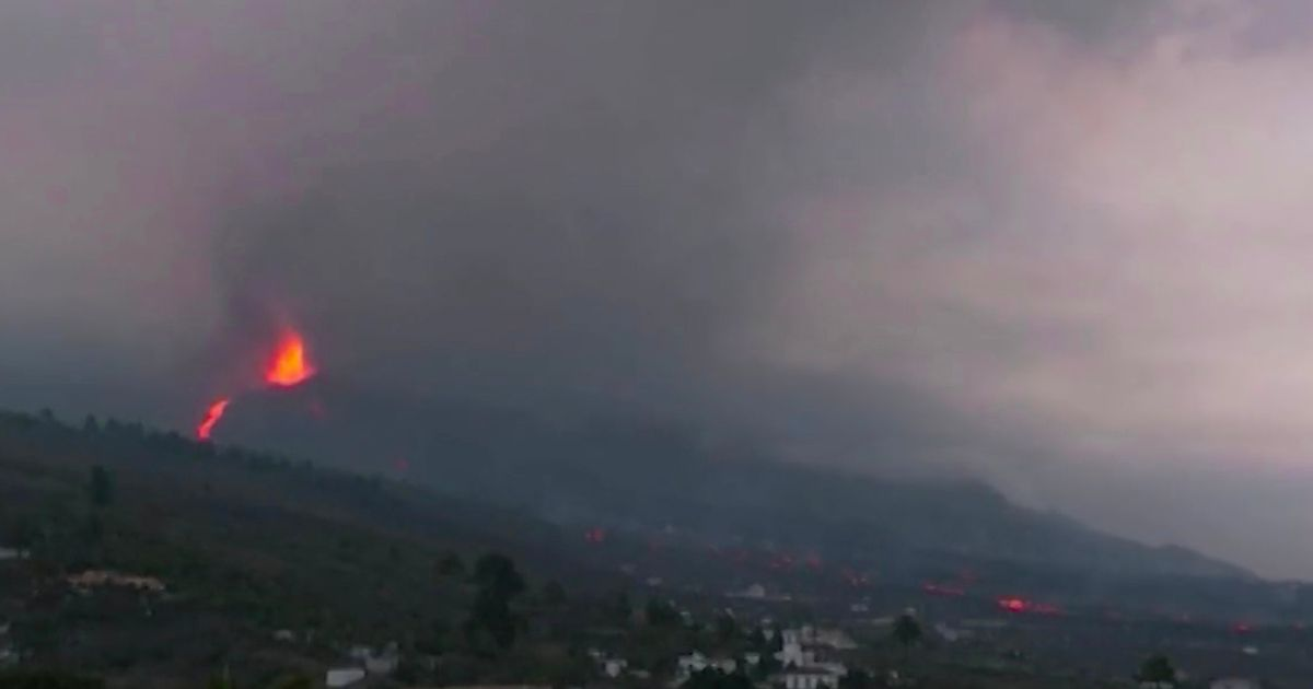 La Palma volcano: Giant blocks of red-hot lava roll down hill as tremors shake ground