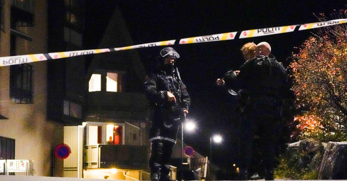 Several killed in Norway bow and arrow attack