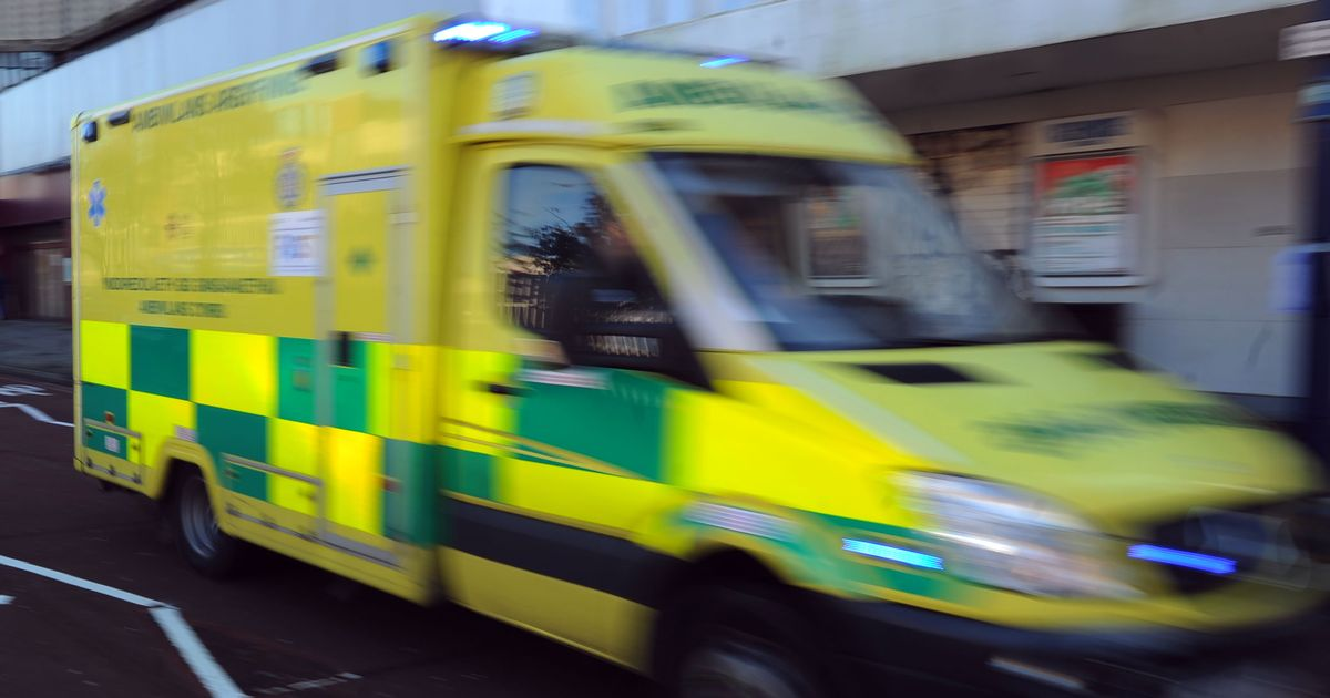 Six-hour ambulance waits to be 'commonplace' this winter, warns   paramedic