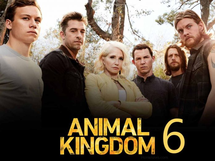 TNT Confirmed Animal Kingdom 6| Know Everything About It 1