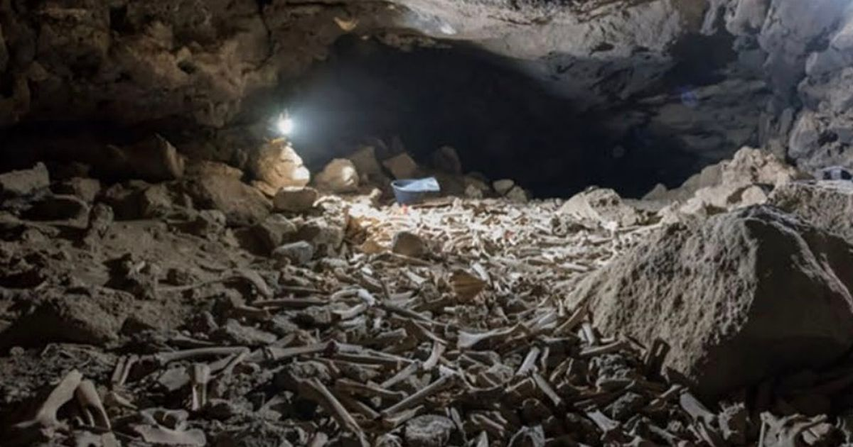 The Umm Jirsan cave in Saudi Arabia is filled with thousands of human and animal bones