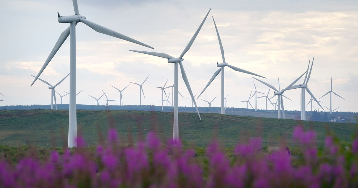 Top green energy suppliers revealed