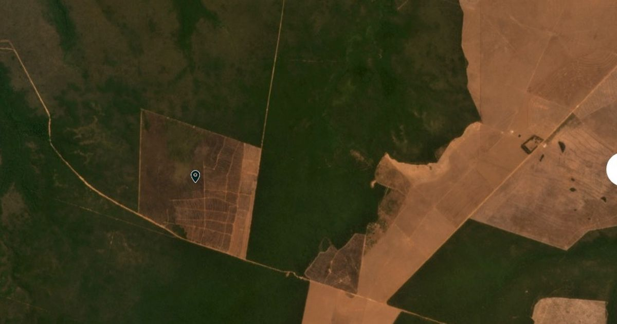An image shows part of the Amazon rainforest before devastating deforestation