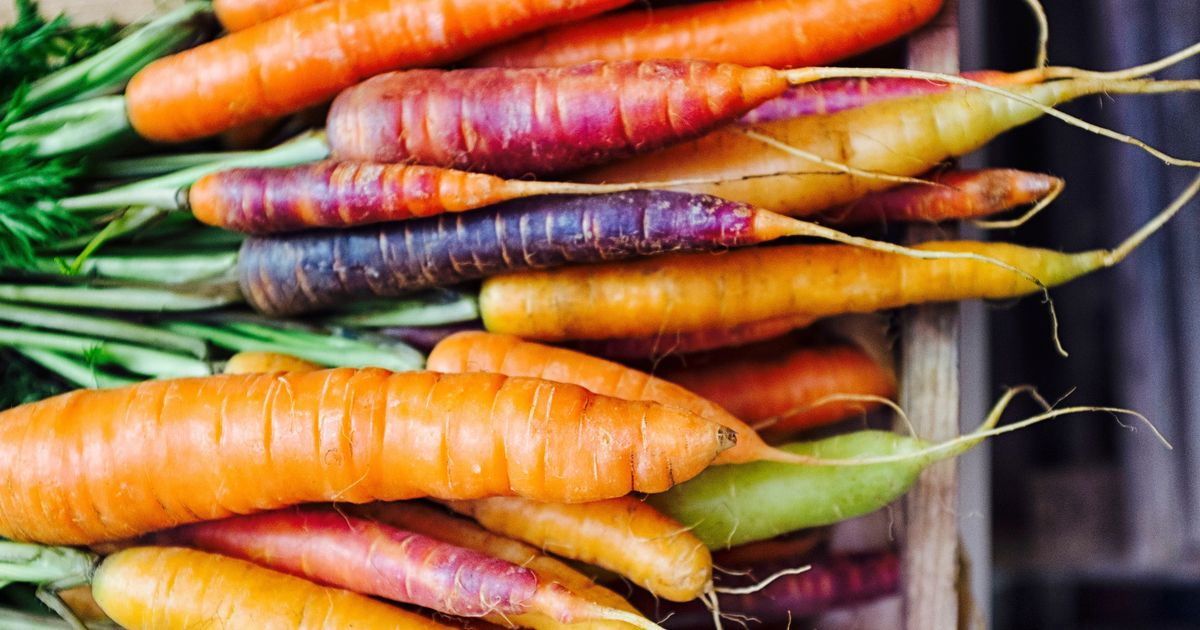 Which vegetables can you grow in autumn?