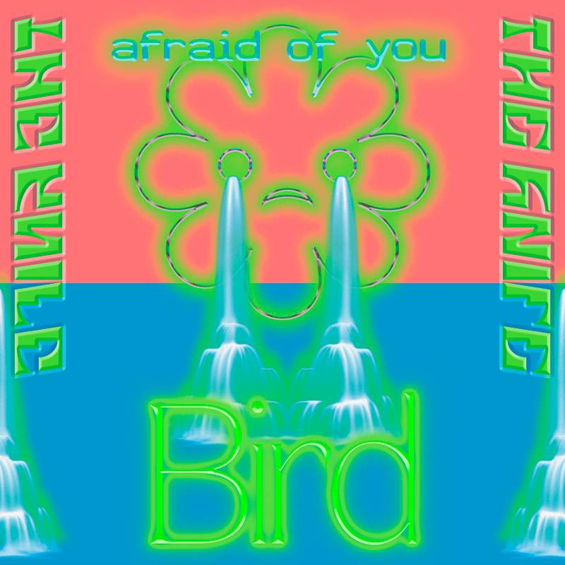 Bird/Afraid of You cover art, showing a flower line image crying waterfalls