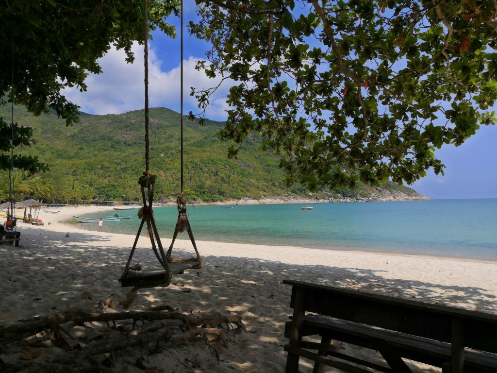Swing hanging from a tree at Bottle beach