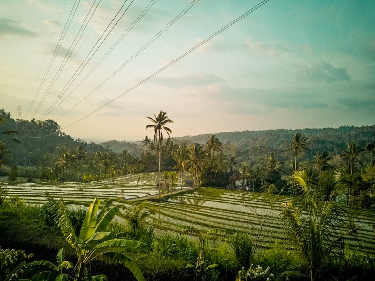 day trip itinerary to north Bali rice terraces Antosari the Travel Deck