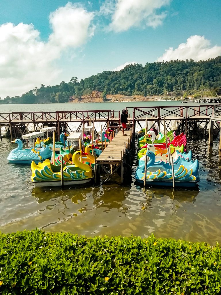 Paddle boats in the shape of a swan at Bratan lake