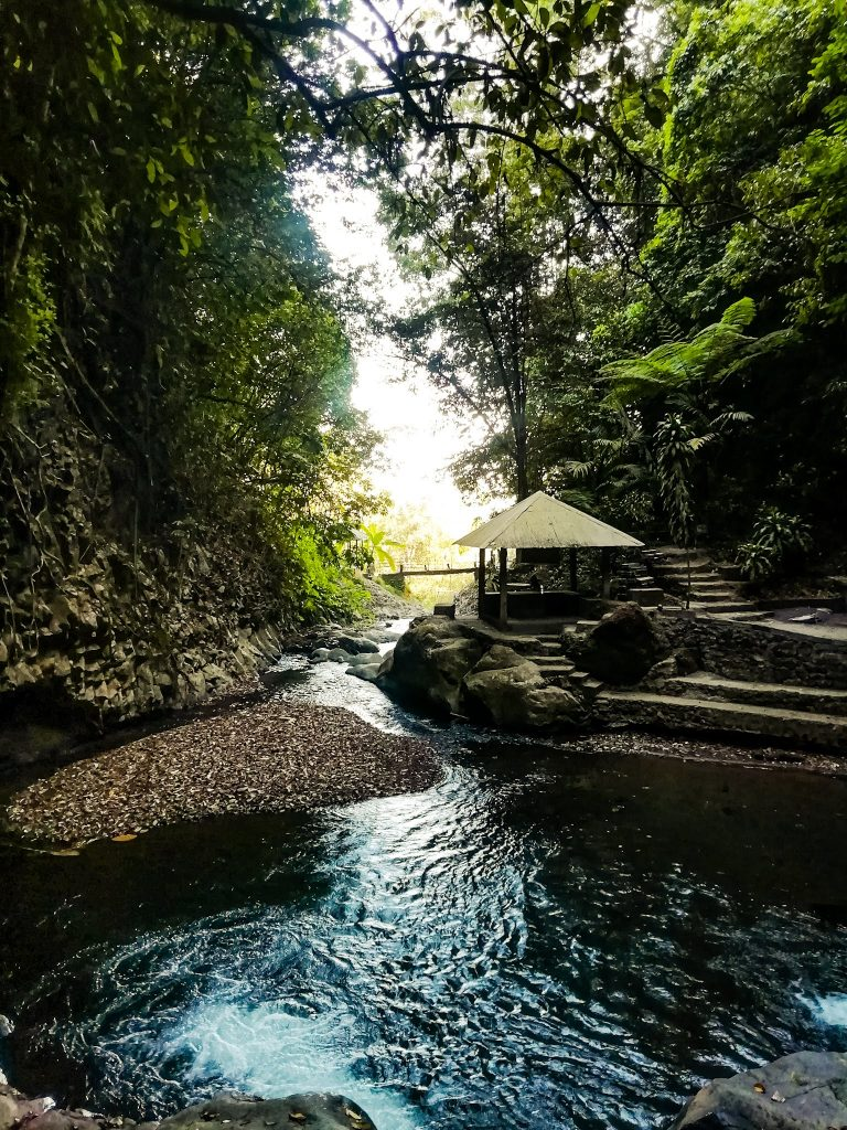 the path leading to Gitgit Twin waterfall along a stream of water and surrounded in lush vegetation