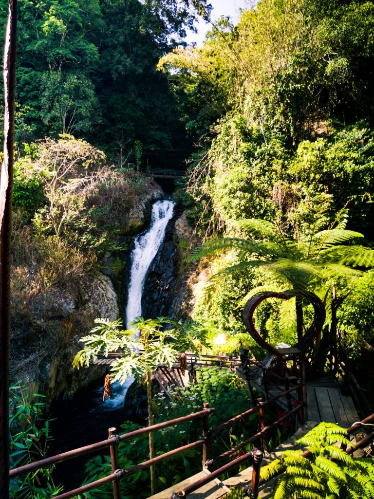 the view over Mekalongan waterfall which is a 5 minute walk from Gitgit Twin Waterfall