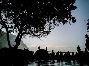 Read more about the article Tembeling Forest, Natural Pools & Beach on Nusa Penida West Coast