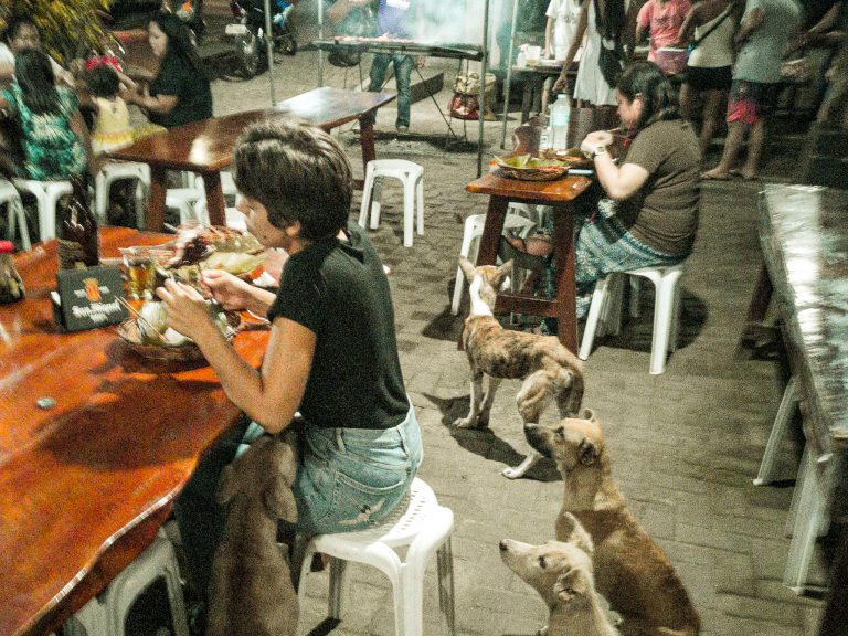Jacqueline at Checkpoint restaurant on Camiguin surrounded by stray dogs all staring at her with their puppy eyes.