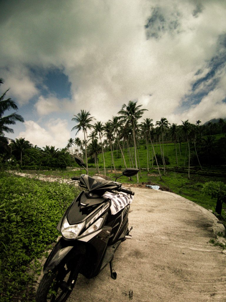 Parked our scooter on this mountain top surrounded with palm trees and looking down onto the jungle and ocean