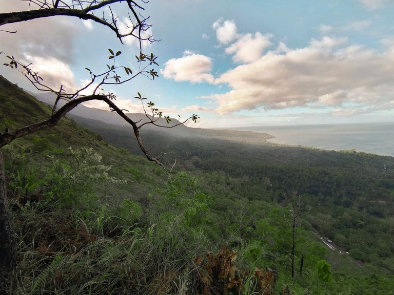 the amazing view from the top of the Walkway to the Old Volcano overlooking the jungle and sea