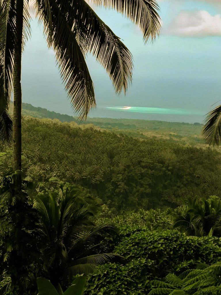 view of White Island from a distance and thick jungle in Camiguin