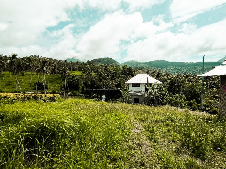 the mountainous landscape and jungle in central Camiguin
