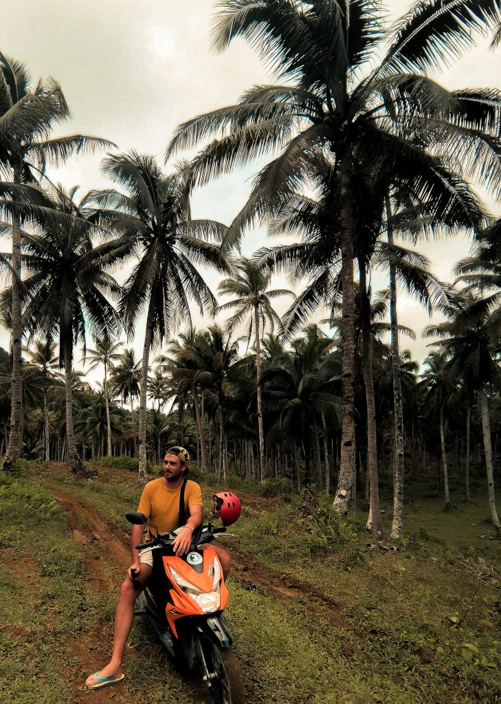Cruising around Siargao we couldn't help but wander off into the coconut forests