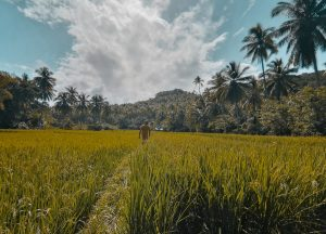 Read more about the article Pacifico Siargao | Things to do in Pacifico and North Siargao