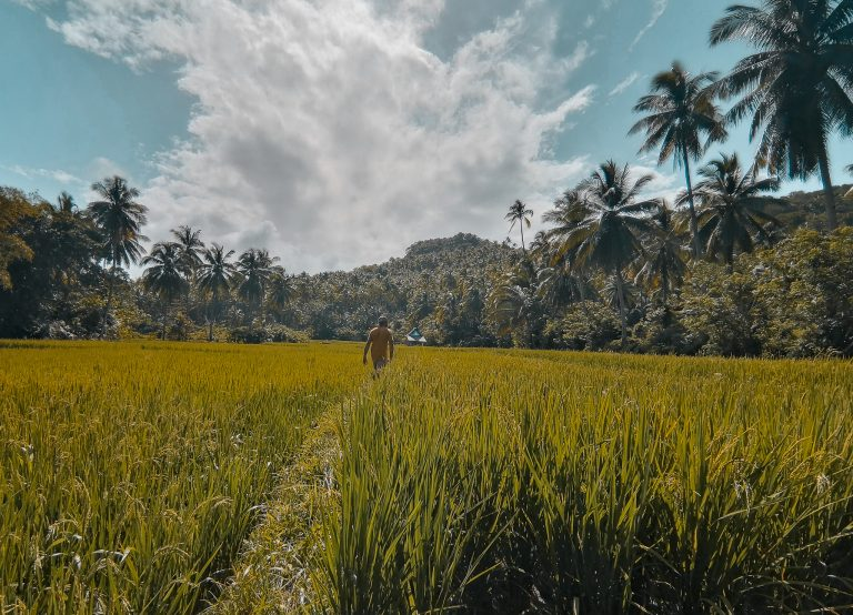 Pacifico Siargao | Things to do in Pacifico and North Siargao