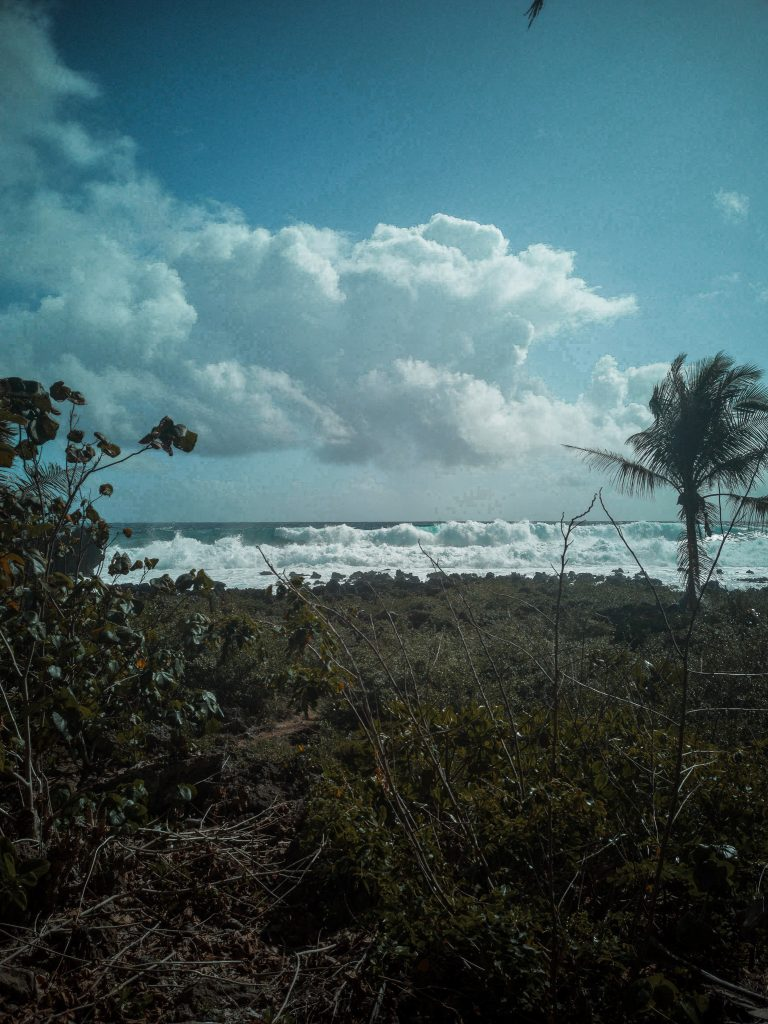 The waves and swells on this side of Pacifico are huge