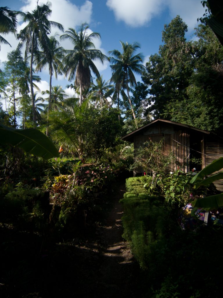 The trail down to Locong Falls along some local houses hidden in palm trees