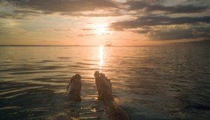 Read more about the article Paliton Beach – Best Sunset Beach in Siquijor