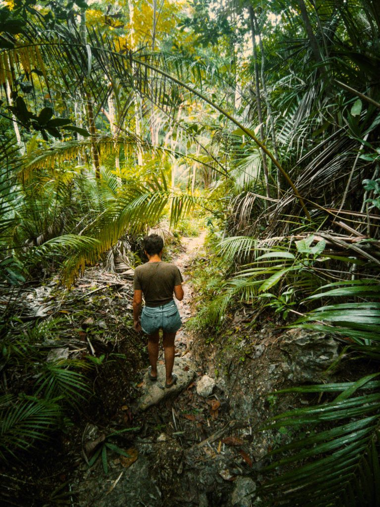 The trail down to Cabugsayan Falls is an easy 15 minute among Siquijor's jungle environment