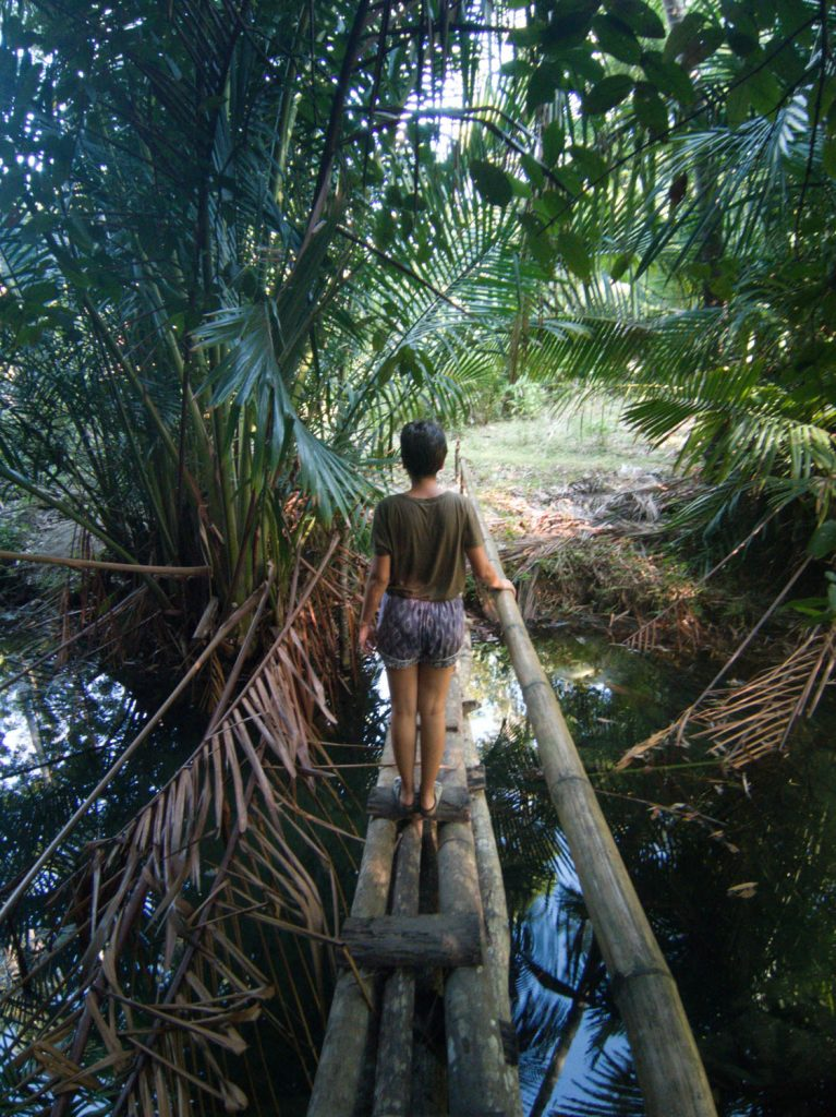 The trail leading to Cabugsayan is made up of bamboo bridges, water streams and a surrounding landscape within a tropical jungle