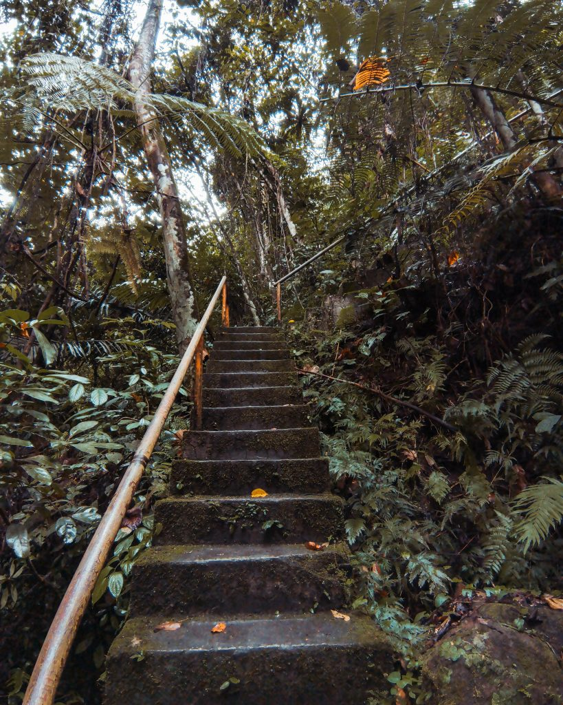 Another flight of concrete stairs