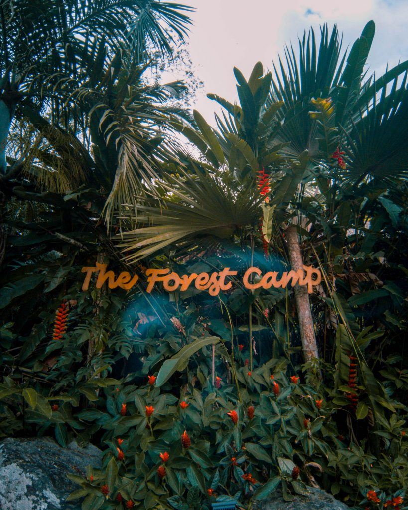 The Forest Camp sign upon entry