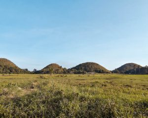 Read more about the article THE CHOCOLATE HILLS ON BOHOL