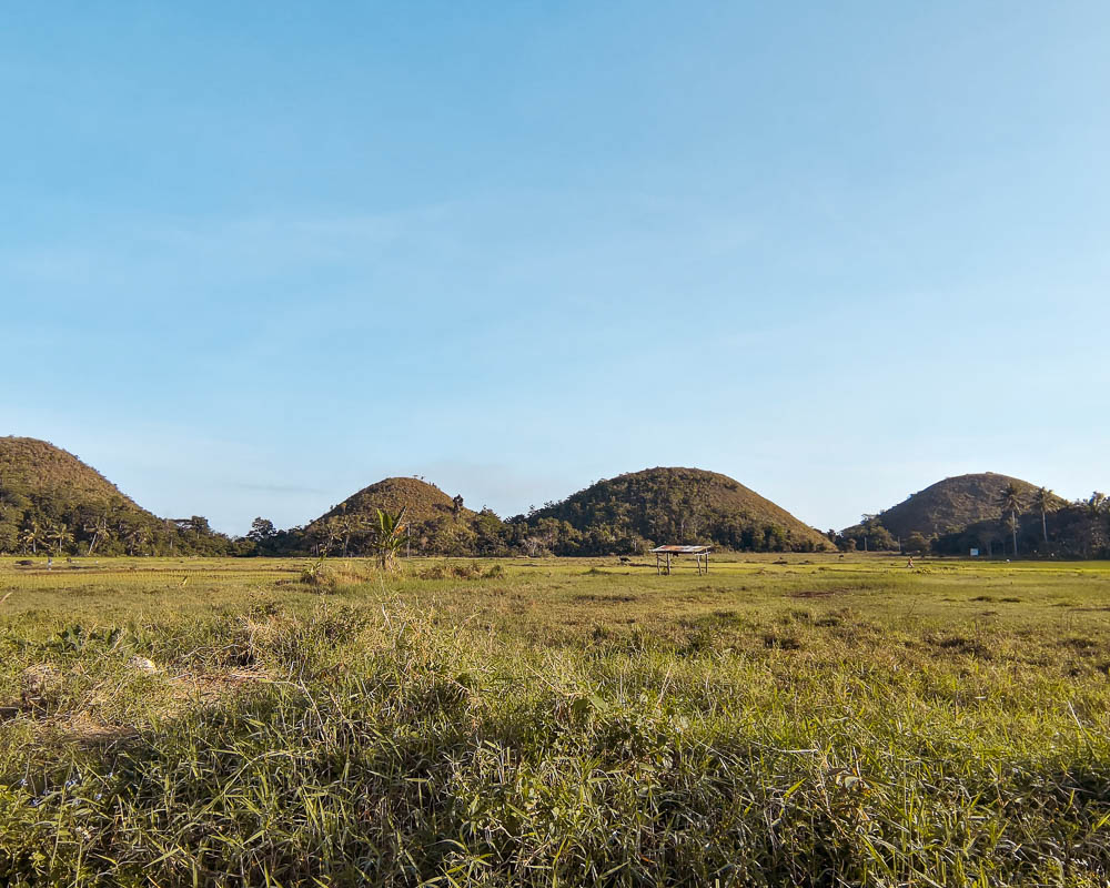 You are currently viewing THE CHOCOLATE HILLS ON BOHOL