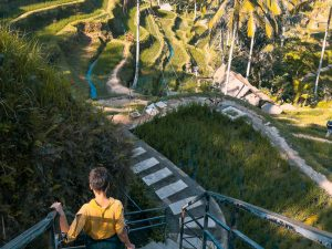 Read more about the article So Many Things To Do In and Around Ubud Bali
