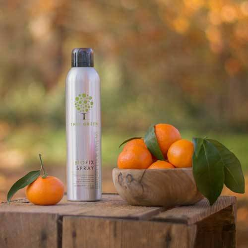 Biofix Spray: Strong hold hair spray enriched with essential oils | This Green